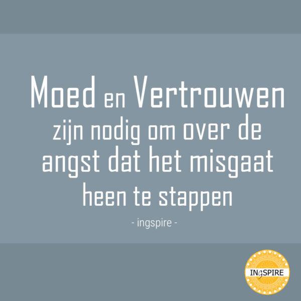 Moed en Vertrouwen zijn nodig om over de angst dat het misgaat heen te stappen - citaat van ingspire.nl