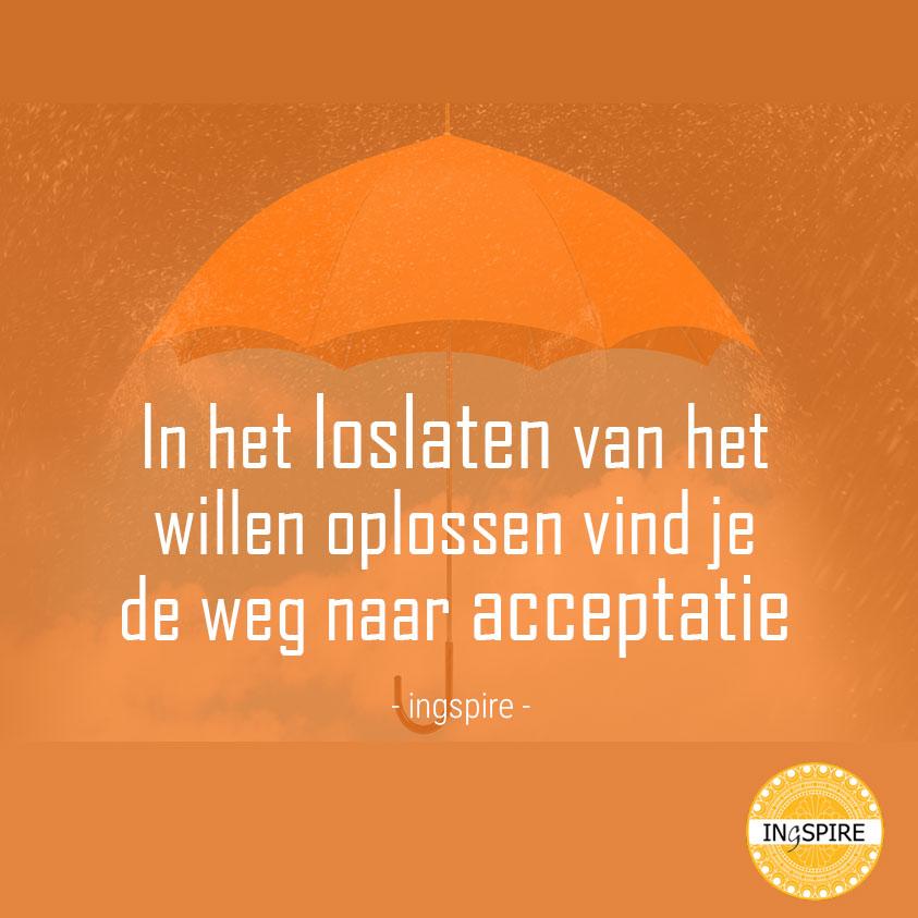Spreuk over acceptatie van Inge Ingspire.nl -In het loslaten van het willen oplossen vind je de weg naar acceptatie
