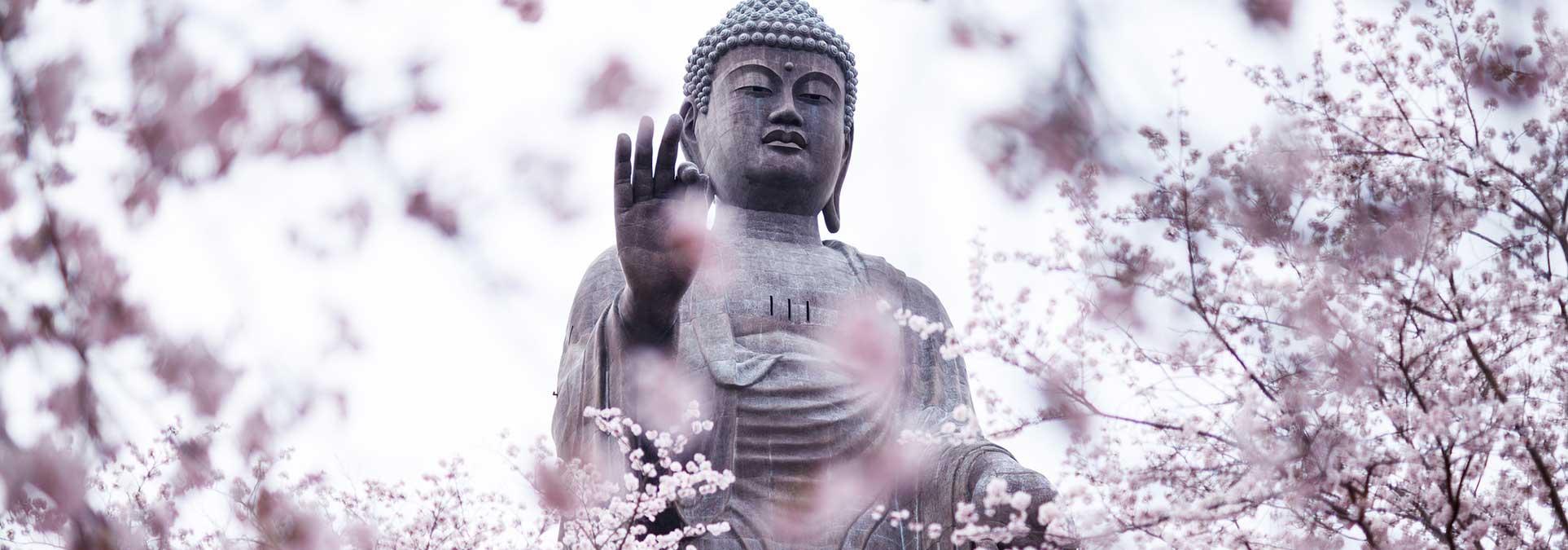 Oude Levenslessen Van Boeddha Hét Zingevingsplatform Met