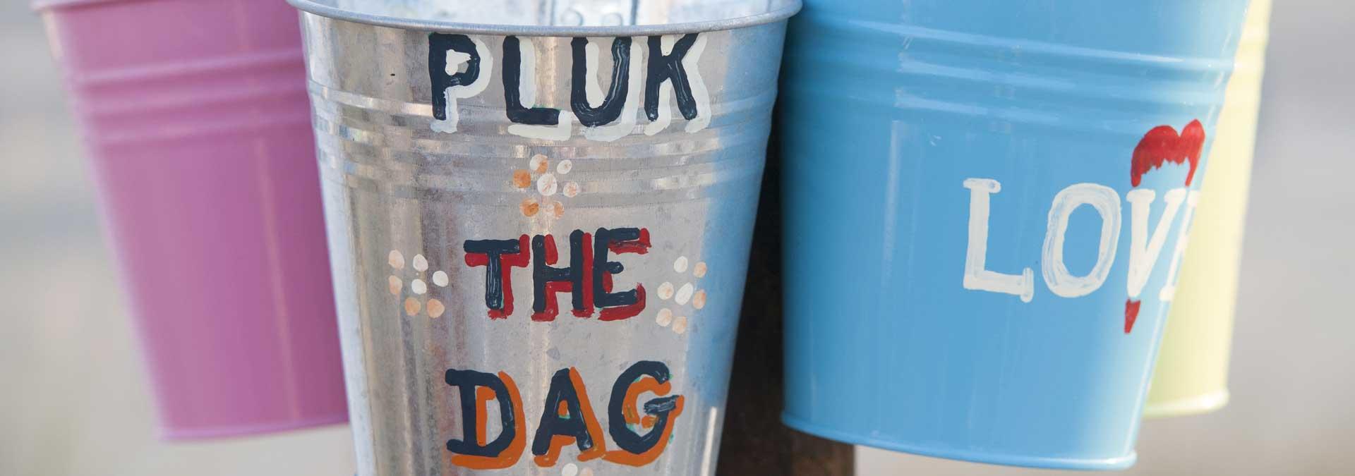 Pluk de dag quotes! - kijk snel op ingspire.nl