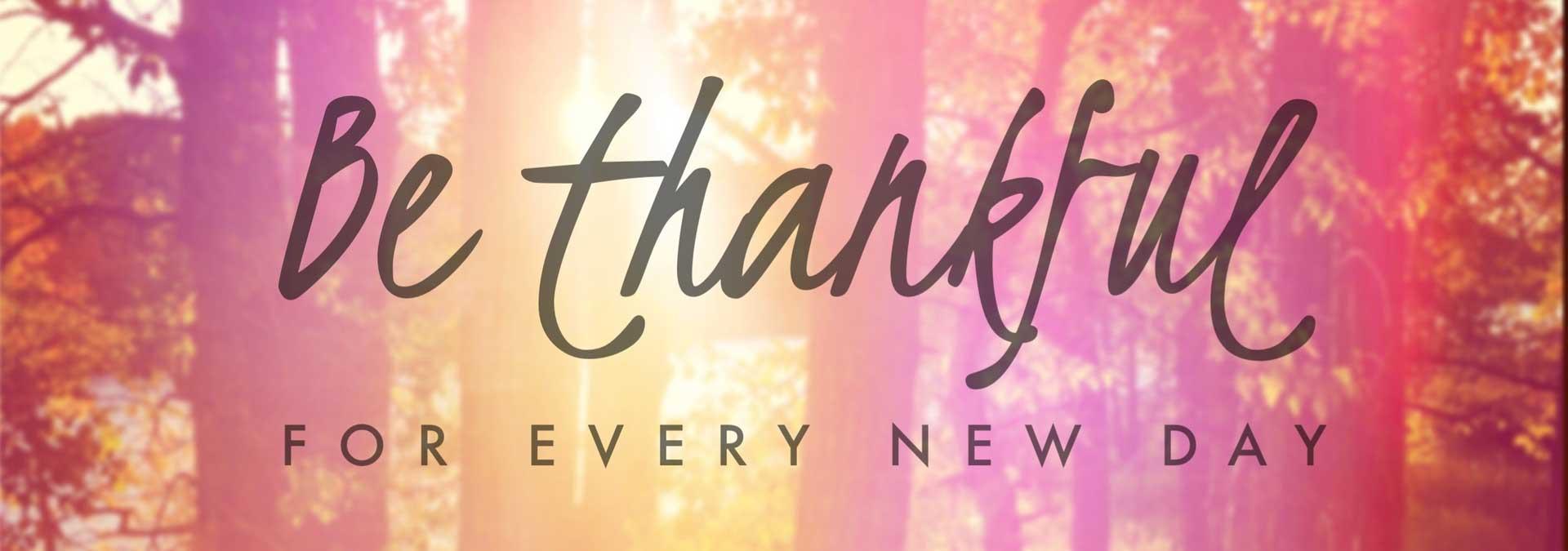 Top 12 Spreuken Over Dankbaarheid Hét Zingevingsplatform