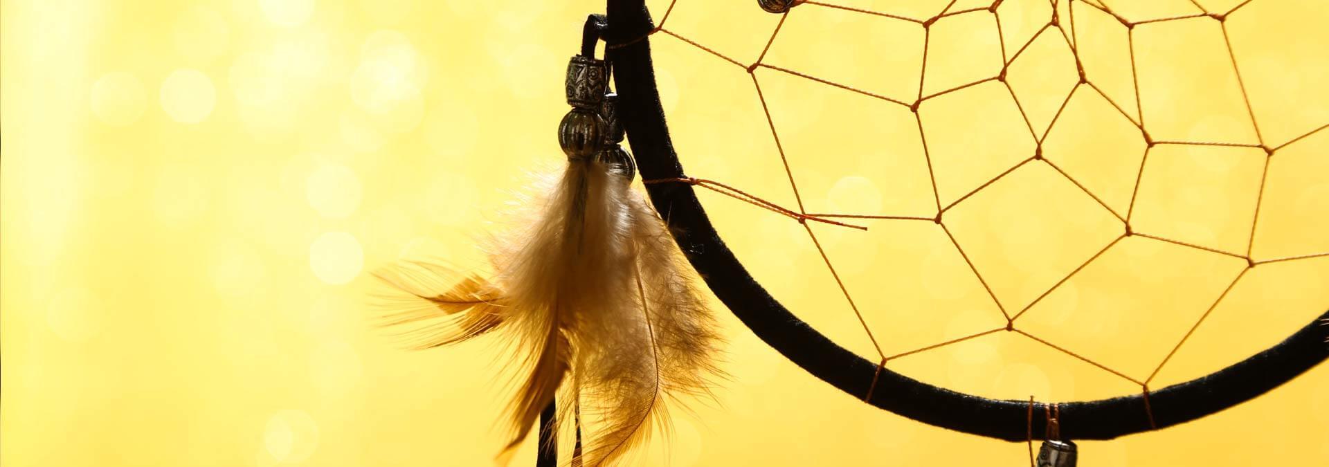 Citaten Over Dromen : Spreuken over dromen hét zingevingsplatform met