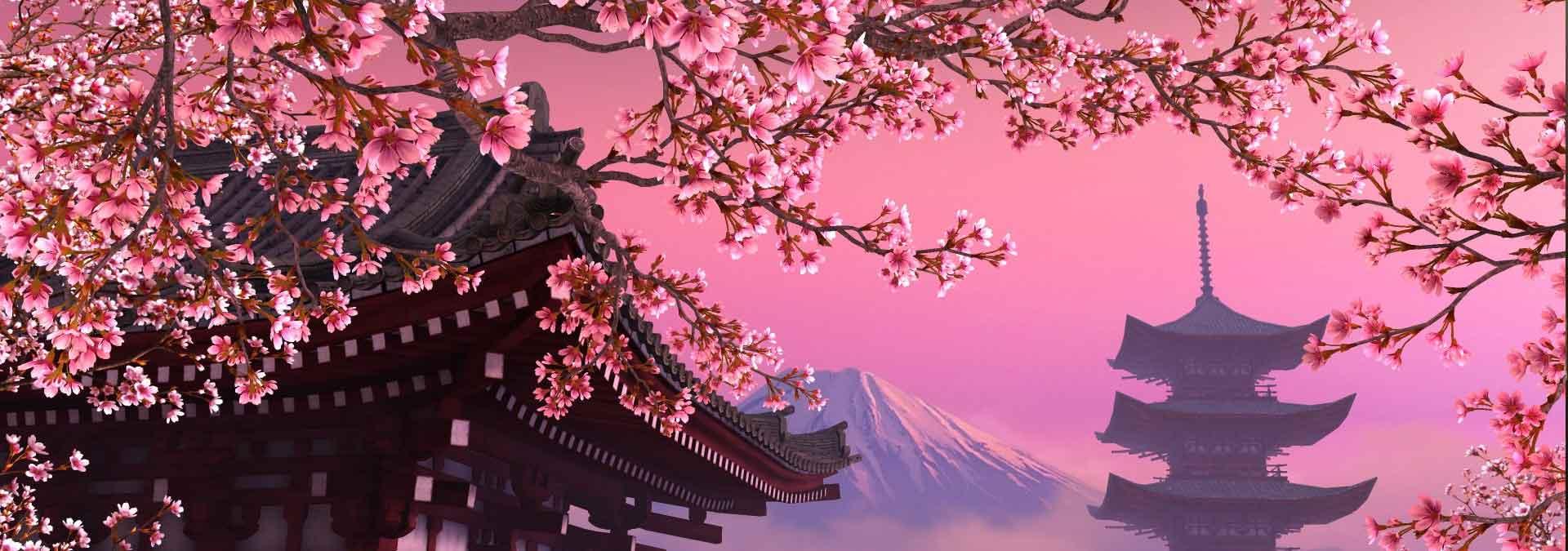 japanse spreuken en wijsheden wijsheden uit Japan   Hét zingevingsplatform met wijsheden  japanse spreuken en wijsheden