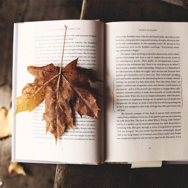 Welk boek past het beste bij jouw persoonlijke groei? - leestips voor de vakantie van ingspire.nl