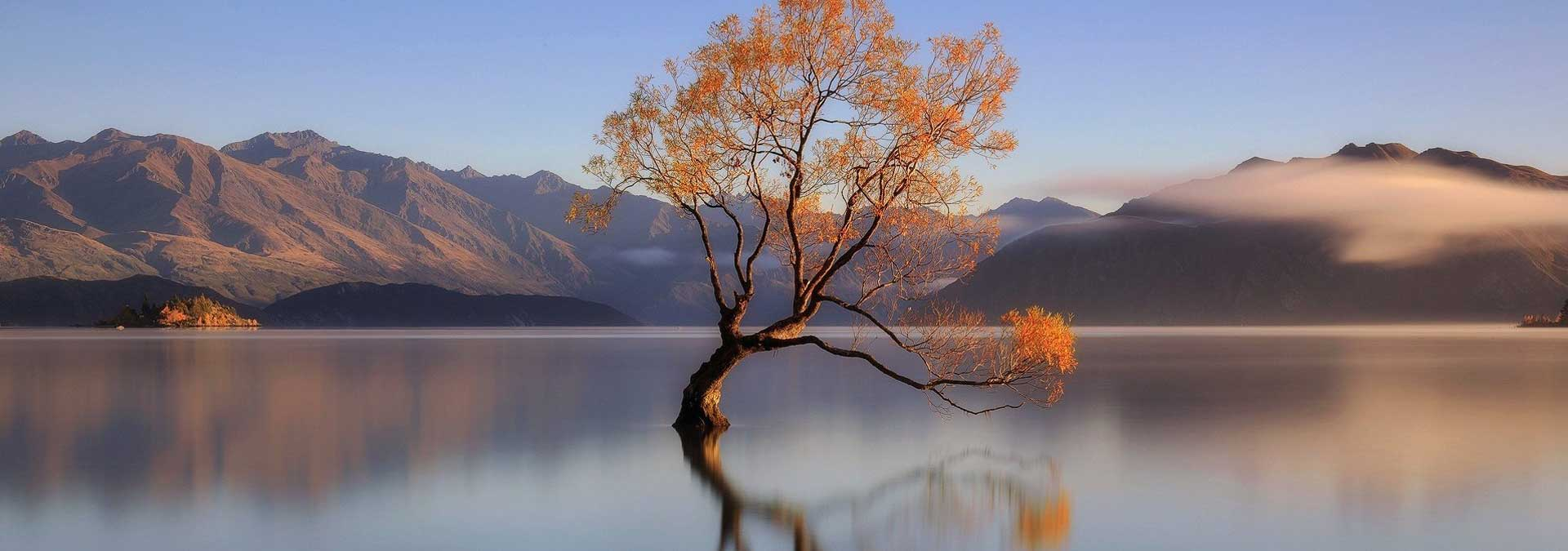 Zelfreflectie in de natuur vinden - Ontdek mooie levenslessen die de natuur met ons deelt - ingspire wijsheden
