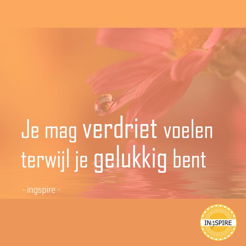 Je mag verdriet voelen terwijl je gelukkig bent - © Troost Citaat Ingspire.nl