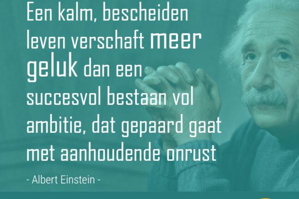 Einstein spreuk - Een kalm bescheiden leven - quotes zingeving op ingspire.nl