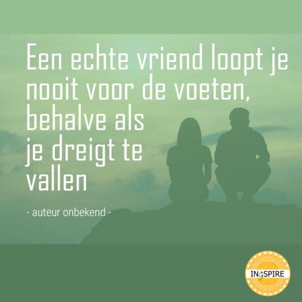 Quote over vriendschap: Een echte vriend... | www.ingspire.nl