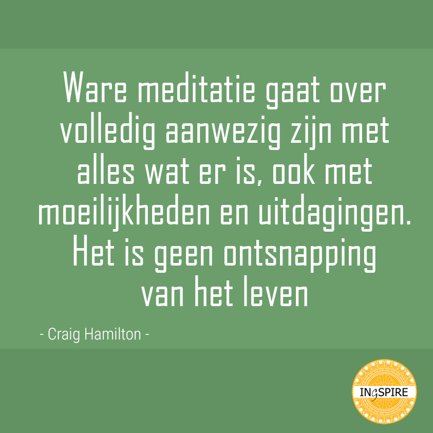 Craig Hamilton : Ware meditatie gaat over volledig aanwezig zijn met alles wat er is, inclusief moeilijkheden en uitdagingen. Het is geen ontsnapping van het leven.   Ingspire