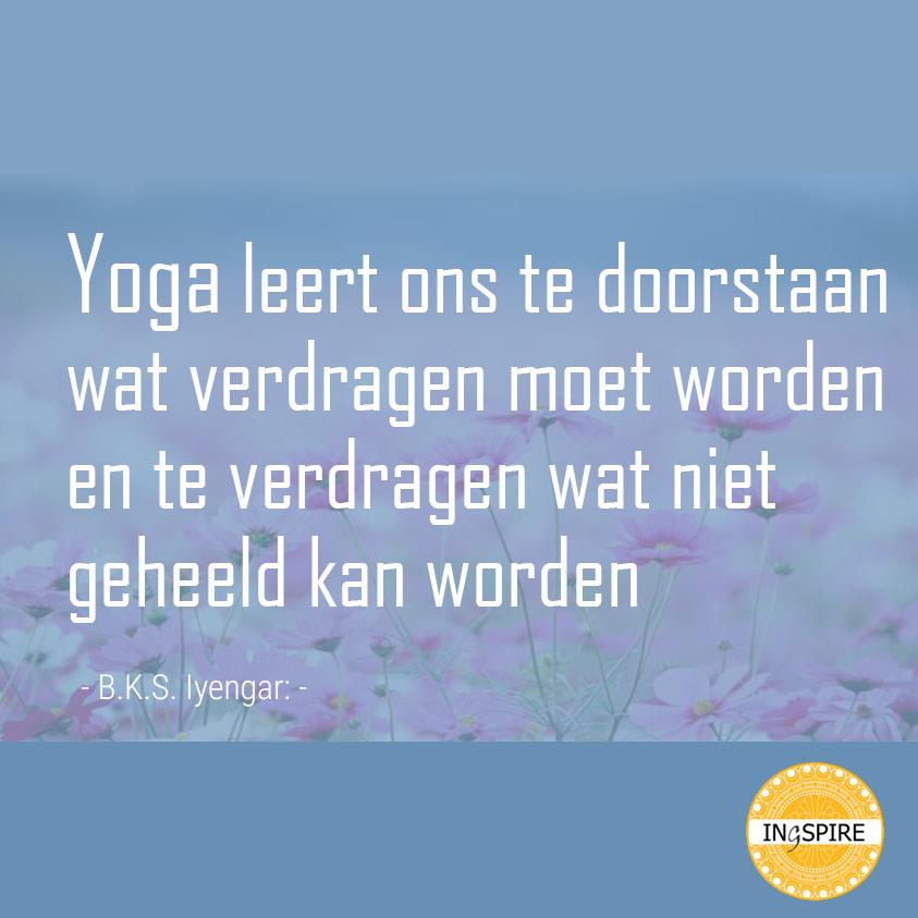 Spreuk - Yoga leert ons te doorstaan wat verdragen moet worden en te verdragen wat niet geheeld kan worden - citaat Iyengar op www.ingspire.nl