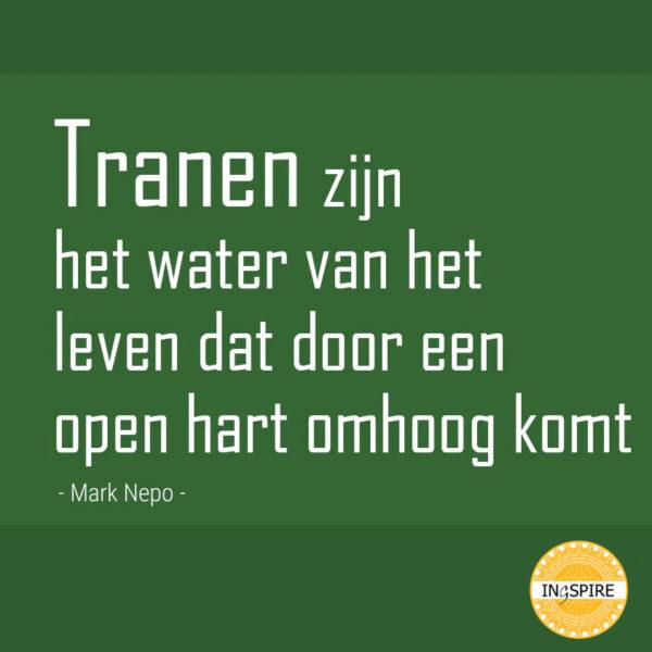 Citaat Mark Nepo: Tranen zijn het water van het leven dat door een open hart omhoog komt