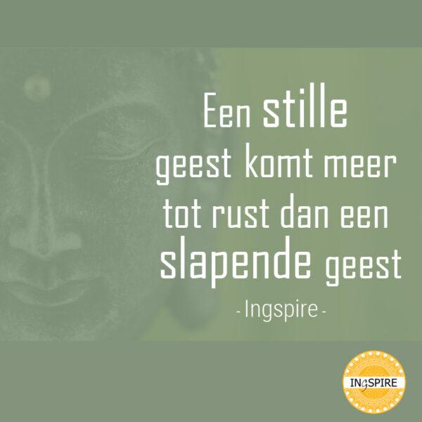 Een Stille geest komt meer tot rust dan een Slapende geest - Citaat van Inge Ingspire over mindfulness en helder waarnemen